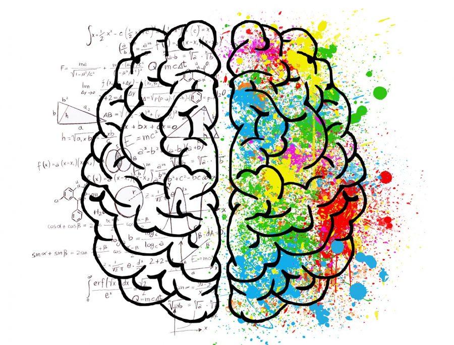 メンタルを克服するにはどうすればよい?FX投資における心理学プロスペクト理論とは?